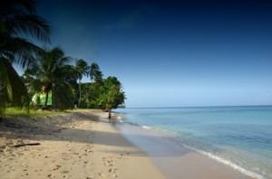 luxury Barbados west coast villas