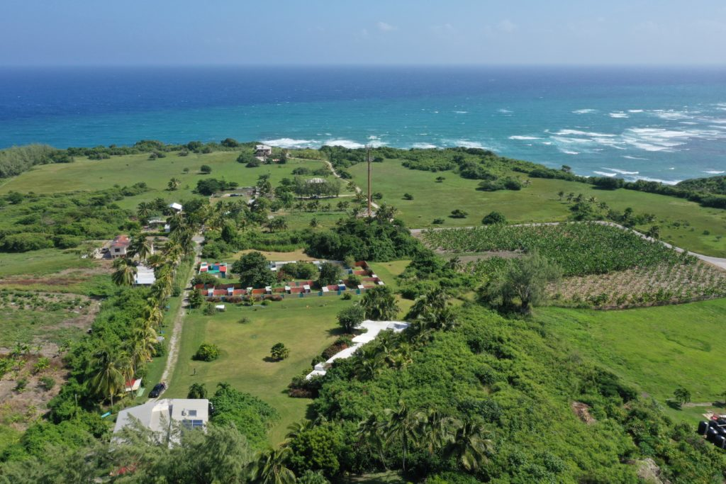 acres of green and the ocean and animal sanctuary